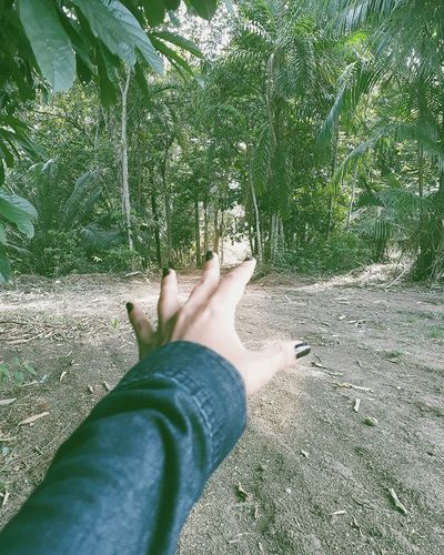 Manaus, Amazonas, Brazil @icarolineeeee Low Section Human Body Part Human Leg Personal Perspective One Person Barefoot Human Foot Day Real People Leisure Activity Shadow Women Sunlight Grass Lifestyles Outdoors One Woman Only People Relaxation Adult