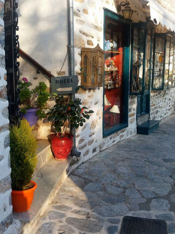 Hotel Village Village Life Village Photography Makrunitsa Mountains Pelion Green Nature Path Plants And Flowers Stairs Local Shops Localphotography Architecture Built Structure Day Building Exterior The Way Forward Outdoors No People