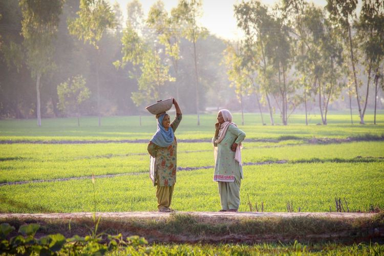 Two old ladies gossiping in punjab's village while doing their daily work Togetherness Family With One Child Field People Full Length Senior Adult Childhood Rural Scene Outdoors Bonding Family Happiness Standing Tree Agriculture Day