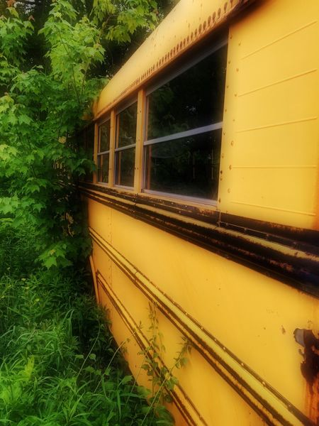 School Bus retired Taking Photos Maine