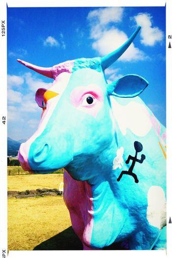 Holiday Enjoying Life Kumamoto 旅行中( ´ ▽ ` )ノ南阿蘇良いね❗️