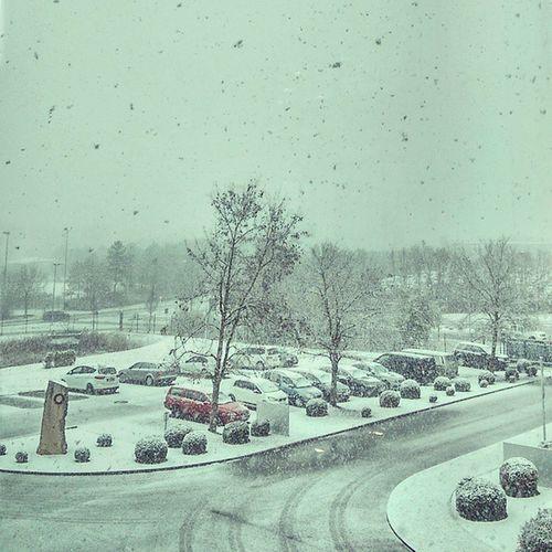 As i said: Its snowing ❄⛄❄ But not SOMEWHERE, nope, just right here!!! ??? Snow Dickefette Schneeflocken Honigkuchenpferdgrinsen Happy Powpow Winteriscoming Silence Inlove Inhale #exhale inwilljetztdarausundnschneeengelmachen