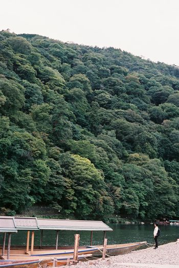 Analog Analogue Photography Arashiyama Boa Day Exploring Film Film Photography Flowing Forest Green Green Color Greenery High Angle View Hill Japan Kyoto Mountain Mountain Range No People Outdoors Trip Valley