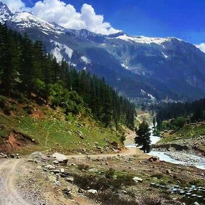 Lush Green Scenery Beautiful swat valley pakistan ushu river freshwater streams whitewater trekking hiking touring travel roadtrip naturelovers nature escapists heaven snowy snowcovered mountains peaks mountainous landscape evergreen trees instatravel