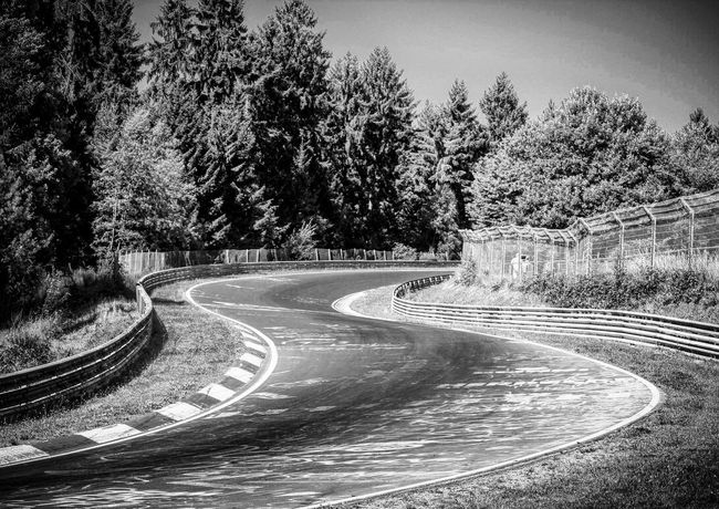 Tree Road Nature No People Curve Growth Outdoors Day Traffic Circle Beauty In Nature Sky Winding Road Blackandwhite Bnw Black And White Racetrack New Talents EyeEm Best Shots Eye4photography  EyeEm Gallery The Week Of Eyeem The Week On Eyem EyeEm Canon Canonphotography