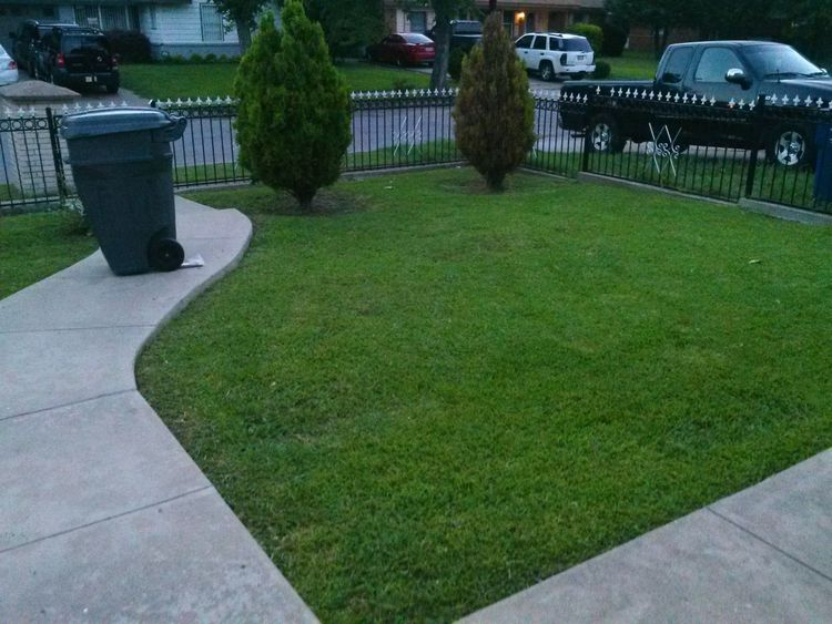 oh you knoe just coming outside to say hi to the world (: my yard thoe to fresh only i can cut lile that #proud #of #my #yard #skills #sunday #up #early #good #day