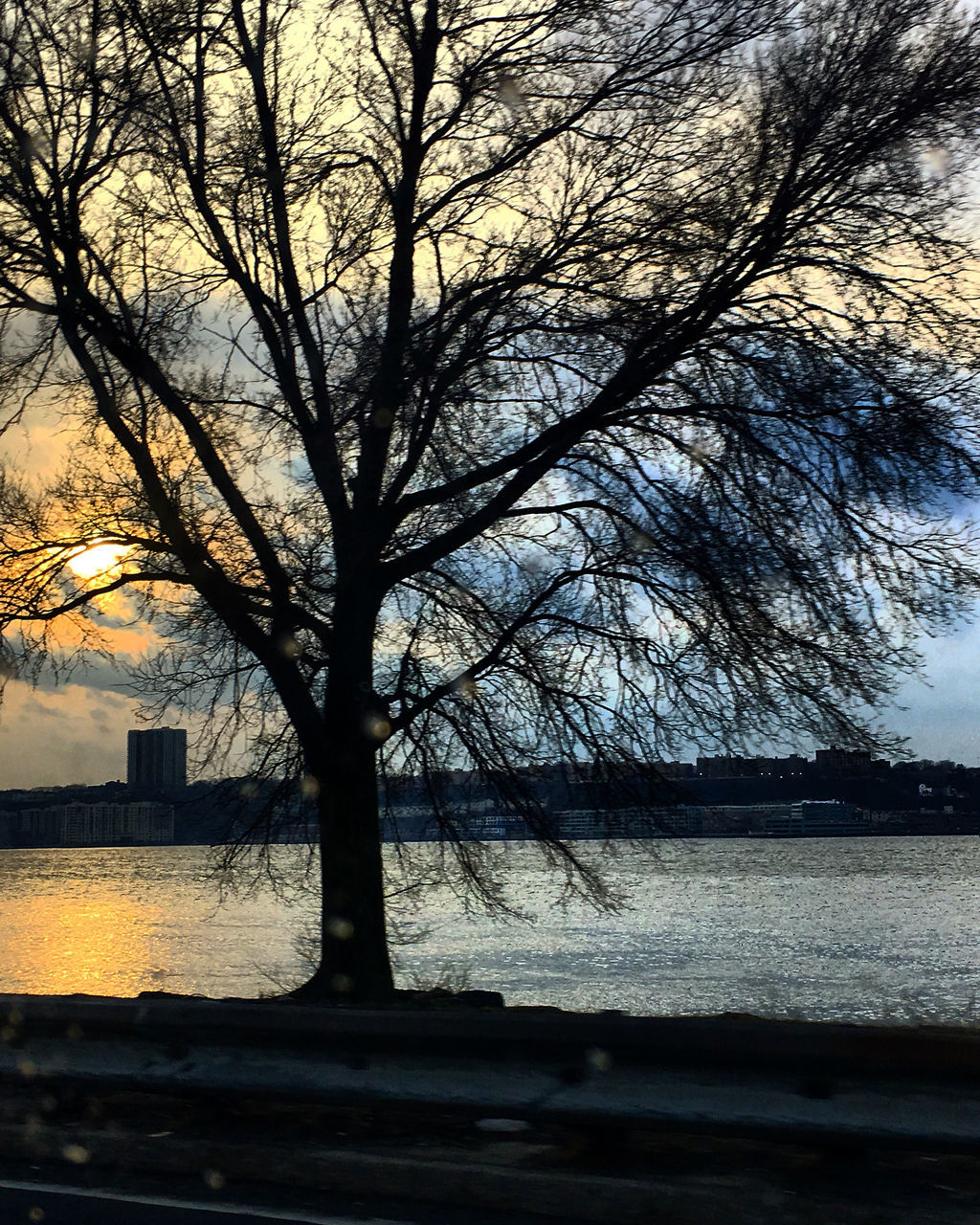 SILHOUETTE TREE BY RIVER AGAINST SKY DURING SUNSET