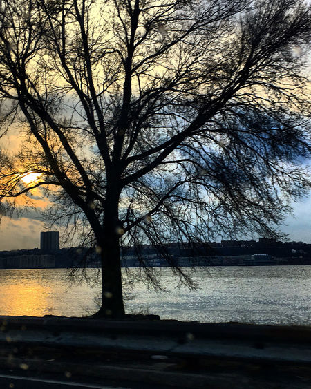 Silhouette bare tree by river against sky during sunset