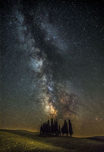 Trees on field against sky at night in tuscany