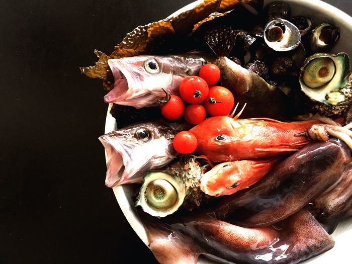 Fish Seafood Photography