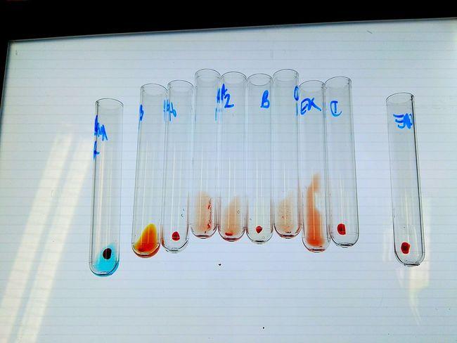 Labor Laboratory Roteskreuz Antibodies Reaction Chemische Reaktion Chemicalreaction Hematology Combos Analytics Wien Vienna  Vienna Austia