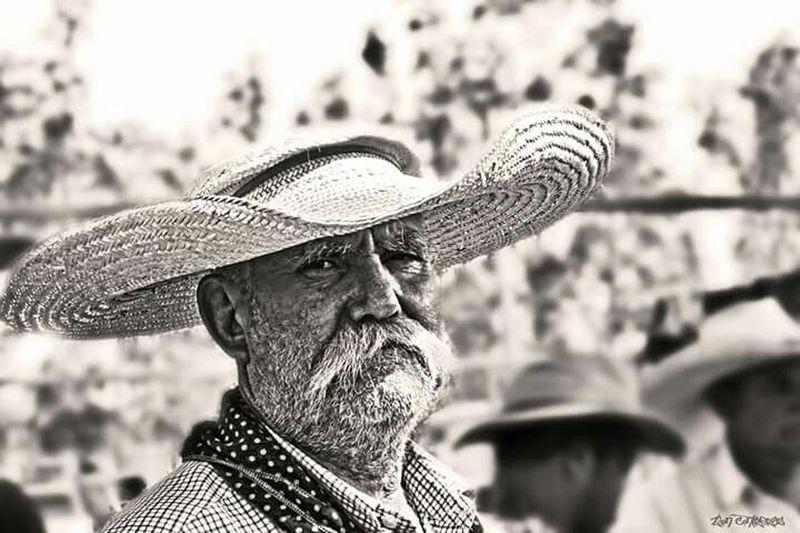 Lida Mula Country Life Barretos PartiuRodeio RodeioS Fazenda Haras Cavalos Parquedopeão