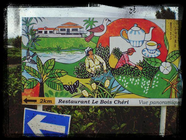 Mauritius road of tea bois cheri