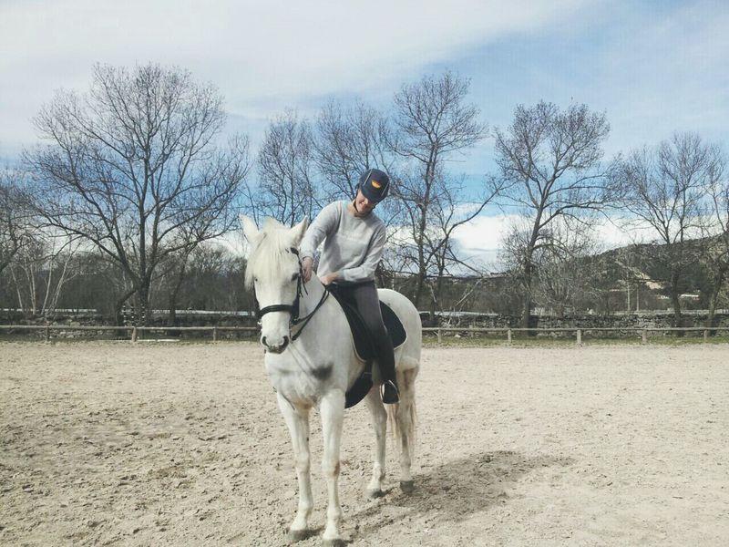 Enjoying Life España SPAIN Madrid Everyday Joy The Places I've Been Today Nature Harmony Horse Caballo ESPAÑOL Equestrian