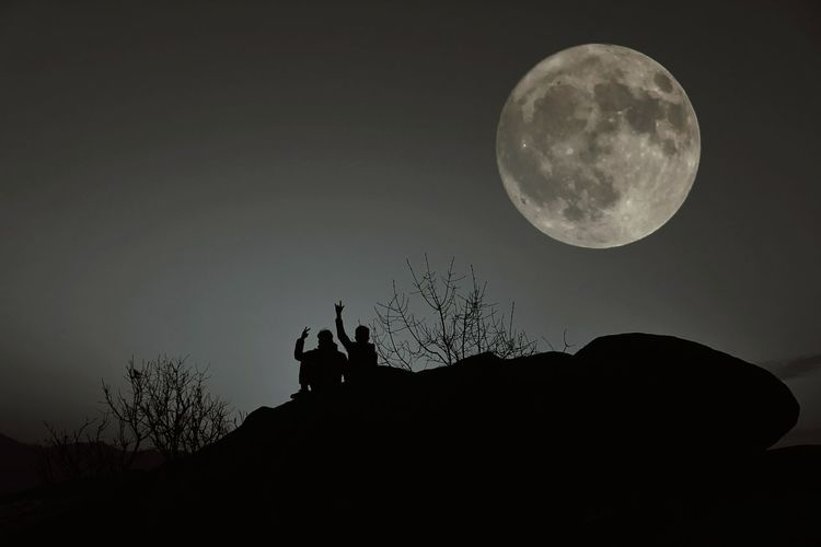 Silhouette Moon Animal Wildlife Night Nature Animal Themes Outdoors Animals In The Wild Beauty In Nature No People Sky Mammal Astronomy An Eye For Travel