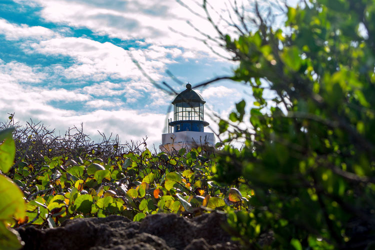 faro - Puerto Rico Faro Cloud Nubes Mountain Montana árbol Hojas Green Verde Blue Azul Cielo Landscape Paisaje Nature Naturaleza Outdoors AlAireLibre Tropical Tree Leaf Sky Architecture Building Exterior Built Structure Plant Lighthouse Direction