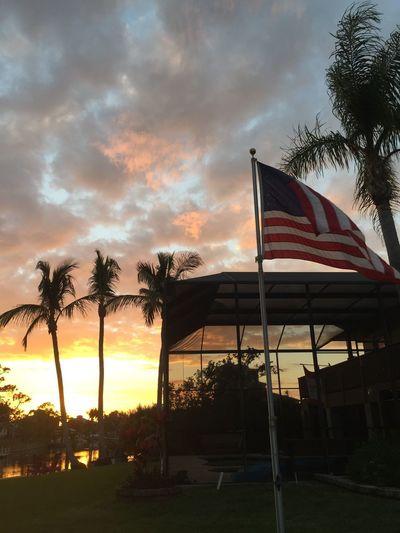 Patriotic Florida Sunset BonitaSprings,Florida FloridaSunsets Florida Flag Sunset Sky Palm Tree Patriotism Cloud - Sky Nature