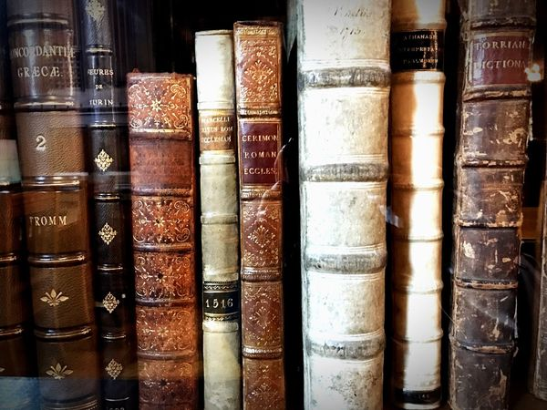 """""""Intelligence is the ability to adapt to change""""-Stephen Hawking Book Library Education Learning Bookshelf In A Row Hardcover Book Large Group Of Objects Literature Full Frame Collection Indoors  Old-fashioned Wisdom No People Shelf Choice Close-up Arts Culture And Entertainment Stack"""