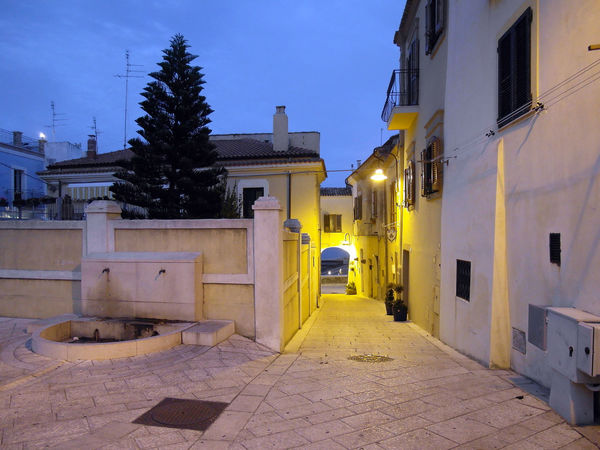 A glimpse of the historical center of Termoli Termoli  Tree Architecture Building Exterior Built Structure Foreshortening Glimpse Historical Center Illuminated Italy Molise Night No People Outdoors Residential Building Street Sunset Termoli City Travel Destination