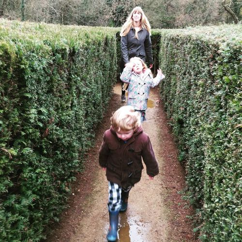 Family walking amidst hedge at park