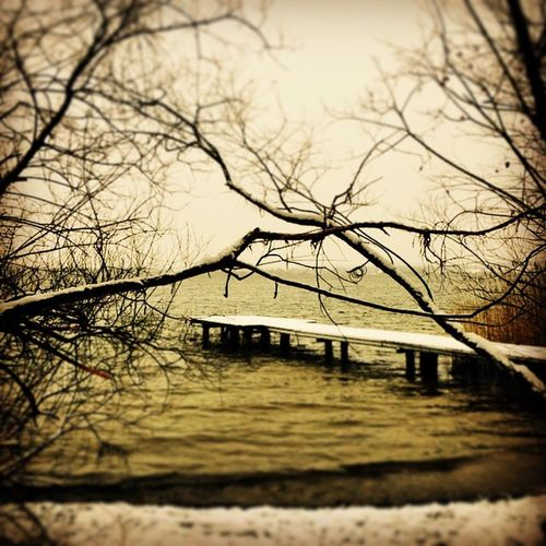 It's Cold Outside Wallersee Henndorf SalzburgerLand Salzburg, Austria Lake Lake View EyeEm Nature Lover EyeEm Best Shots Nature Naturelovers Nature Photography Nature_collection IPhoneography Iphonephotography Austrianphotographers Austria ❤