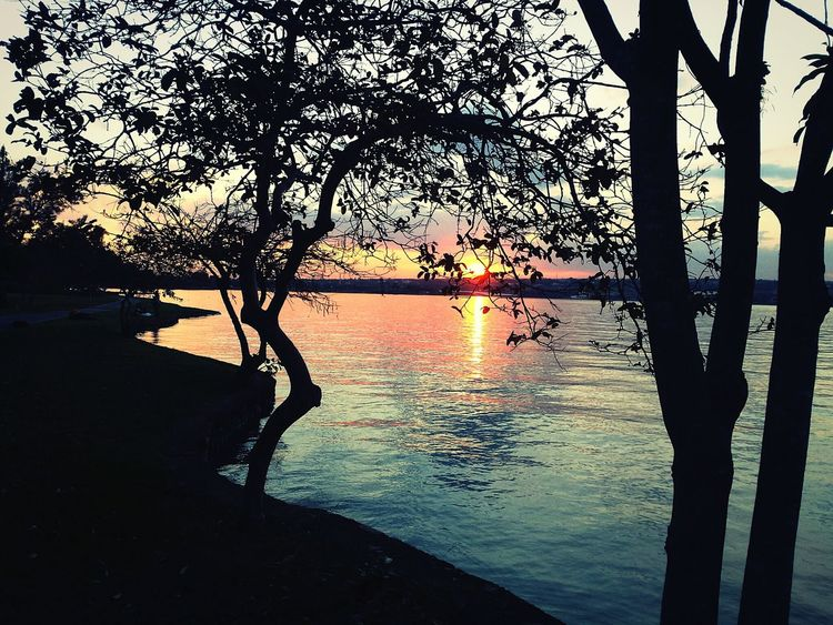 Sky Sol Sunset_collection Sun Lake Brazil Sunset Pordosol Nature Natureza