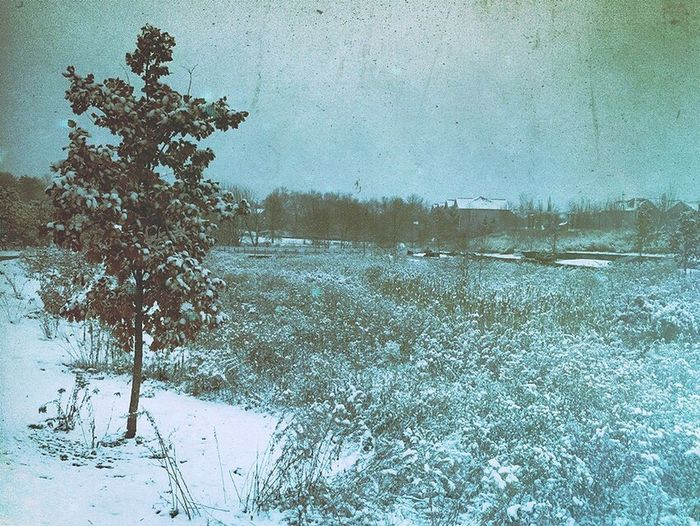 First snow ❄️ of the season ⛄️ Iphonephotography IPhone Photography IPhoneography Iphoneonly Mexturescollectives Mexturesapp Mextures Pureshot Snow Winter Cold Temperature Nature Outdoors Tree No People Beauty In Nature Landscape Tranquility Sky Scenics Day
