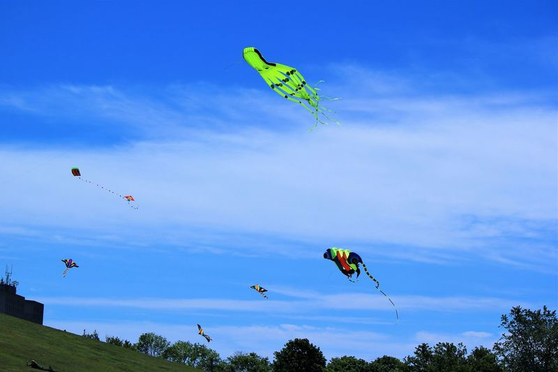 Adventure Beauty In Nature Blue Cloud - Sky Day Environment Extreme Sports Flying Freedom Joy Kite - Toy Leisure Activity Low Angle View Mid-air Multi Colored Nature Outdoors Parachute Plant Sky Sport