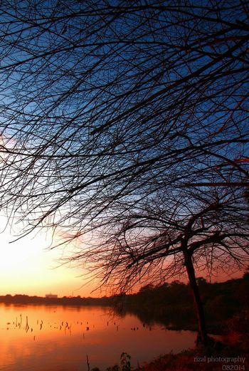 Sunset Silhouettes Sunrise_sunsets_aroundworld