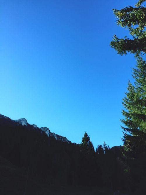 Lac-Noir Montagnes 🌲🍃