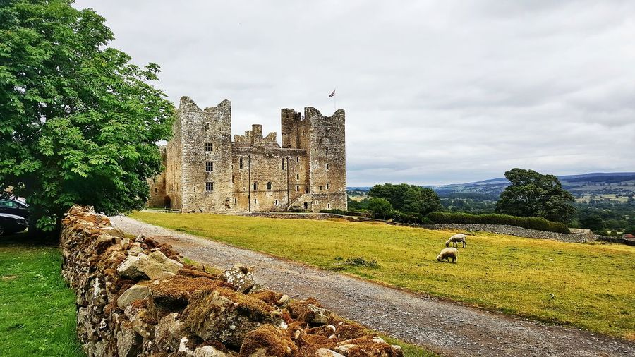 Castle Bolton Ancient Architecture Historical Building History Historic Ancient History Castle Defense Building Tree Sky Grass Cloud - Sky Historic Building Fortified Wall Old Ruin Ancient Fortress Archaeology The Past