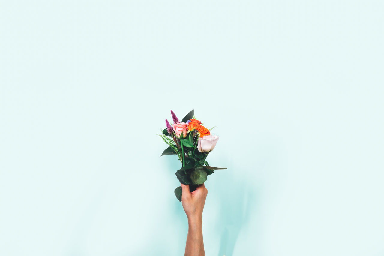 Hand Holding Flowers Over White Background