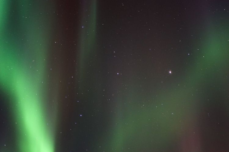 Abstract Astronomy Aurora Aurora Borealis Beautiful Nature Beautiful Night Sky Beautiful Sky Dark Glowing Iceland Infinity Light Looking Up Low Angle View Magical Moment Mystery Night Night Sky No People Northern Lights Once In A Lifetime At Least Outdoors Privileged Roadtrip With The Cousins Space