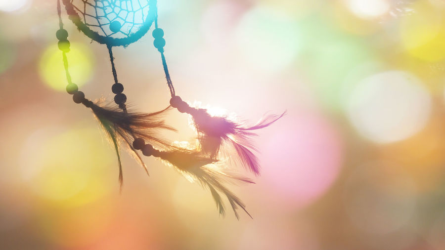 Dream catcher native american in the wind and blurred colorful bright light backgrounds, abstract hope and dream concepts Colorful Abstract Hopes And Dreams Hope Romantic Love Lens Flare Sky Sun Hanging Outdoors Sunlight Growth Feather  Day Focus On Foreground Beauty In Nature Dreamcatcher Nature Vulnerability  No People Fragility Selective Focus Close-up Feather  Freshness