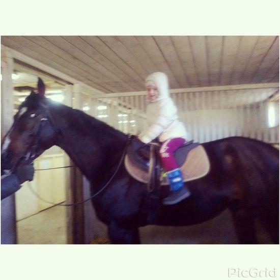 Hello World I Love Horses Shildren love