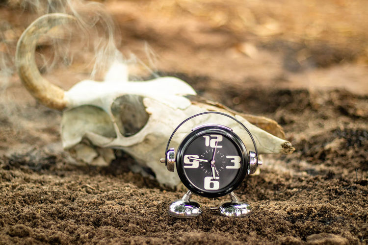 Close-up of clock on the ground