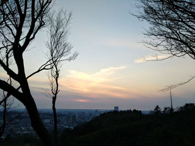Sunset Outdoors Rural Scene Tree Area Sky Scenics Landscape Tree Beauty In Nature Nature Power In Nature 🇯🇵 Japan Scenic Landscapes EyeEm Best Shots - Nature Scenery Pictures Power In Nature Scenics Landscape_photography Kanazawa,japan Nature Sunset Lovers Tranquility Beauty Eyem Best Shots No People Skyporn