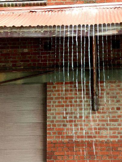 old rain Rain