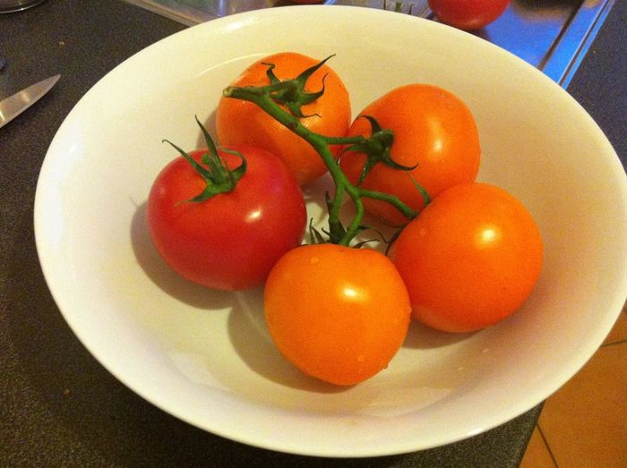 Dutch Tomatoes