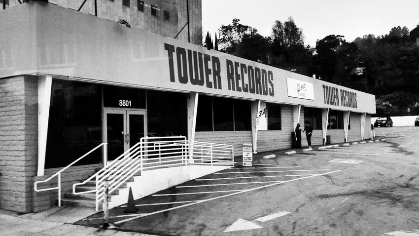 Tower Records Records Music Abandoned Plant Tree Nature Outdoors Empty Building