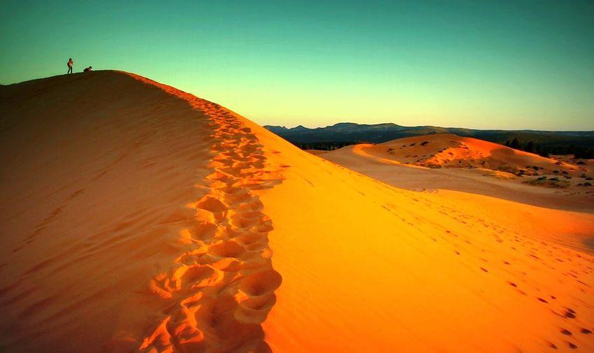 View of desert at sunset