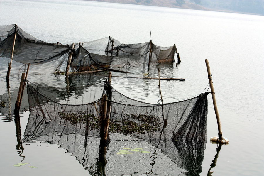 Fishing nets at Begnas Lake, Nepal Begnas Lake Fishing Fishing Net Fishing Nets Lake Net No People Outdoors Water Reflections In The Water