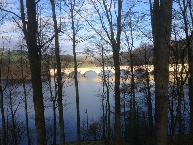 Lady bower Dam derbyshire England bridge Water trees