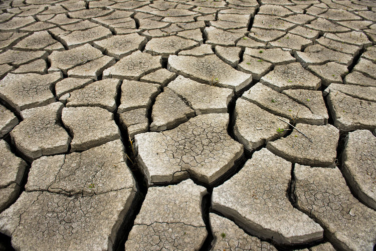 Dry cracked earth background, clay desert texture Dry Drought Earth Desert Barren Background Texture Clay Environment Arid Nature Pattern Ground Climate Dirt Soil Surface Broken Land Mud Terrain Global Hot Split Disaster Erosion Natural Closeup Sand Dirty Arid Climate Cracked Full Frame Scenics - Nature Backgrounds Field No People Day Natural Pattern High Angle View Textured  Outdoors Paving Stone