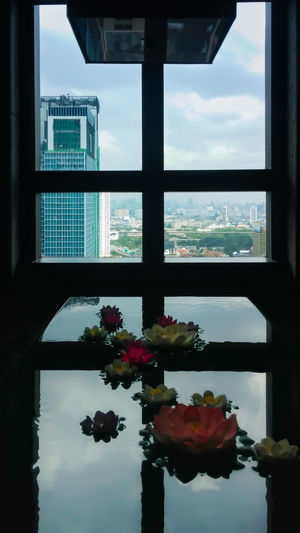 Arrangement Business Cityscape Cityview Close Up Clouds Day Design Fake Frame Glass - Material High Indoors  Light Livingroom Lobby Looking Through Window Lotus Flower Pool Sky Structure Top View Tower Transparent Window