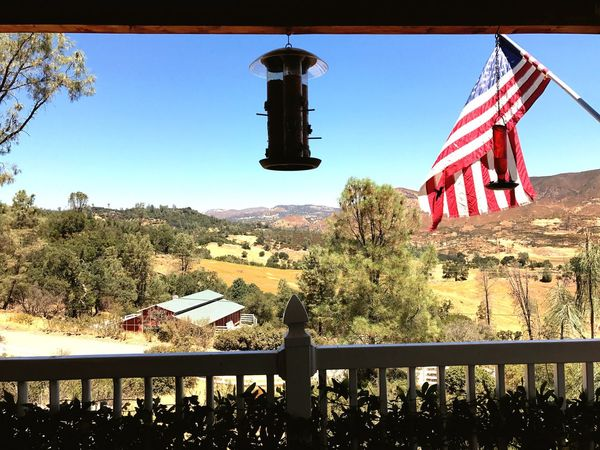 Beautiful things linger just outside your front door Tree Clear Sky Day Outdoors No People Nature Sky Hanging Landscape Mountain Architecture Stars And Stripes Hummingbird