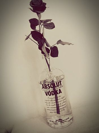 Absolut Vodka Rosas <3 Beauty? Oh Yeah! Laxing Drinks Perfect