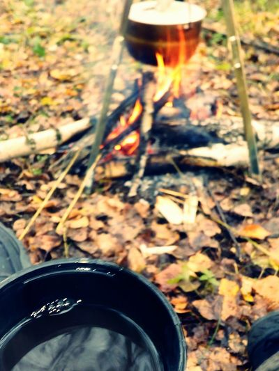 First Eyeem Photo Nature Coffee Food On Fire!