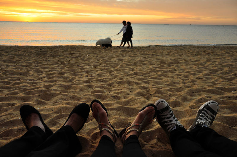Low section of friends against man and woman with dogs at beach during sunset