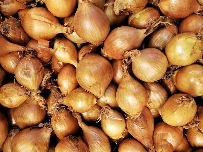 Onions // EyeEm